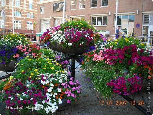 Здравствуйте жители и гости моей любимой Страны Мастеров! Приглашаю Вас всех на прогулку по Голландии. Все фотографии сделаны мною лично в 2007 году. Их более 600, и я решила отобрать некоторые, сделать репортаж и показать его Вам. Буду надеяться, что Вам понравится!   фото 22