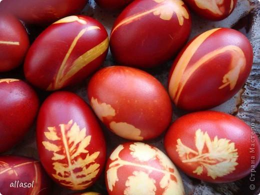 Яйца крашу только в луковой шелухе. Но хочется разнообразия, поэтому крашу с рисунком. фото 4
