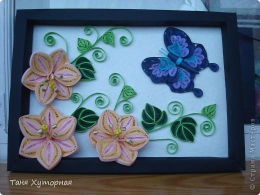 Цветы и бабочка фото 2