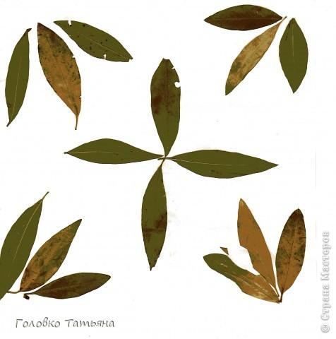 Золото листвы закружит над головой.... фото 2