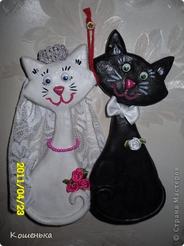 Свадебные коты!!!!
