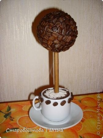 Вот  такое  кофейное  деревце  у  меня  получилось фото 1
