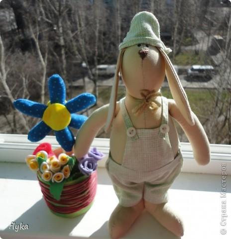 Заяц))) фото 5