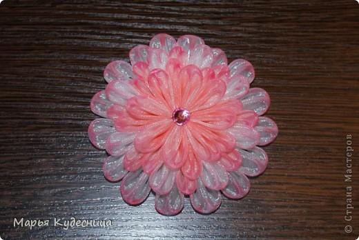 Вот еще один мой цветочек неопределенного сорта. фото 1