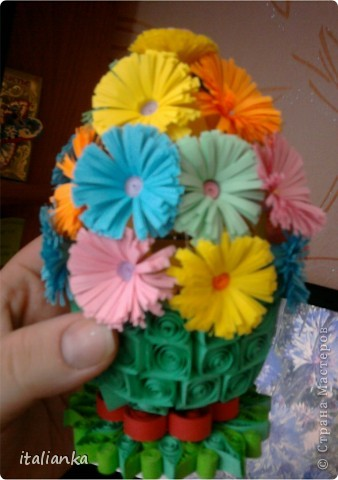 Мои цветы... фото 5