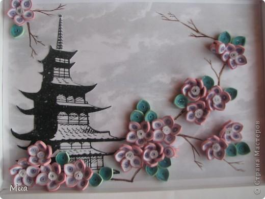 Сакура фото 5