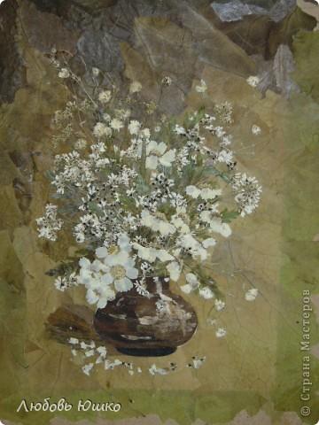 Картина панно рисунок Рисование и живопись картины из природных материалов Листья фото 6