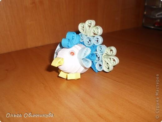 Мои маленькие пасхальные курочки фото 5