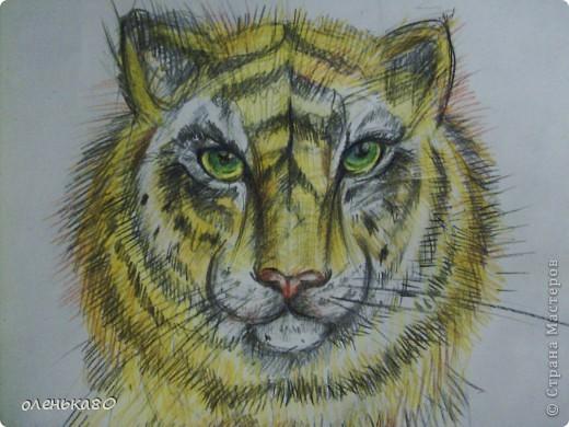 """вот такой тигр """"вырос""""у меня фото 3"""