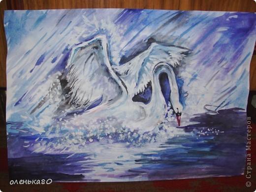 рисунок лебедя без вспышки фото 1