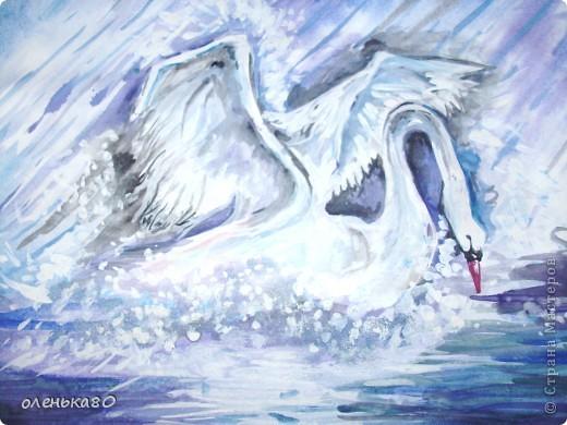рисунок лебедя без вспышки фото 2