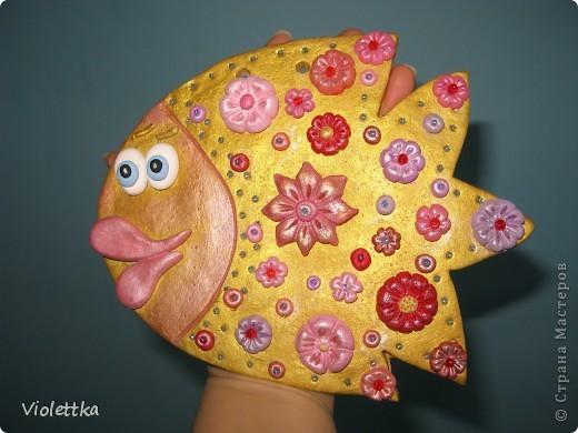 Золотая рыбка, влюбчивая фото 6