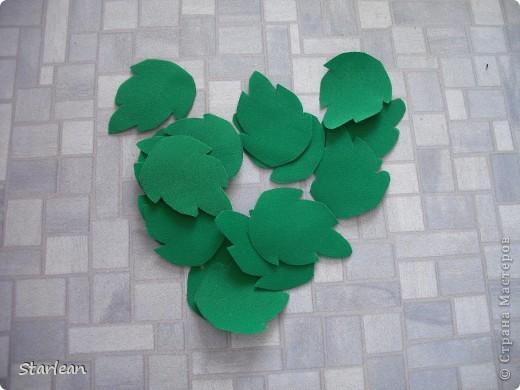 собираем листья фото 3