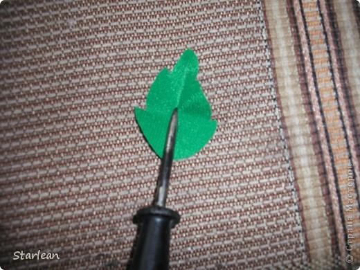 собираем листья фото 4