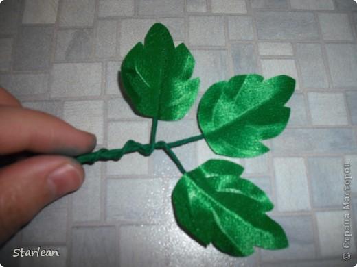 собираем листья фото 9