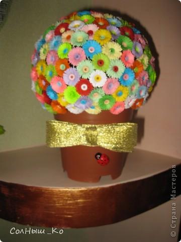 Мой цветочный шарик. фото 2
