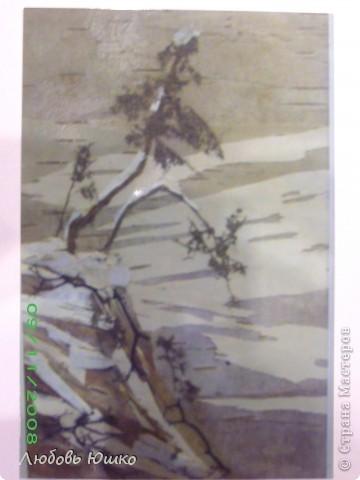 Картина панно рисунок Рисование и живопись картины из природных материалов Листья фото 13