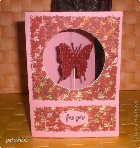 Бабочек на цветок фото 6