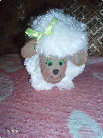 Вот такую овечку я увидела у наших мастериц и тоже захотела.Огромное вам спасибо!!!!!!!!!!! фото 2