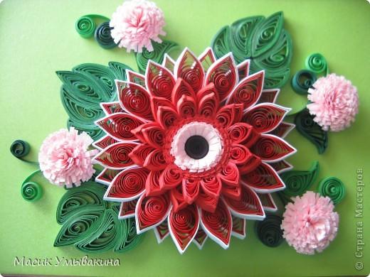 Цветок к цветку! фото 3
