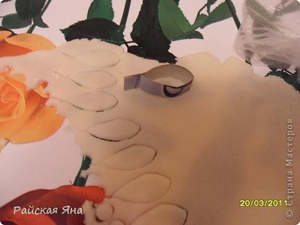 Понравилась работа по  квиллингу Ольги Ольшак решила сделать нечто подобное из теста. Размер картины 76х56, павлин 50х27.  фото 12