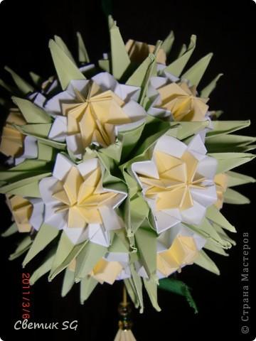 двойная лилия фото 4