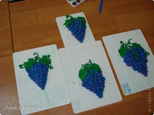 Виноградная лоза фото 1