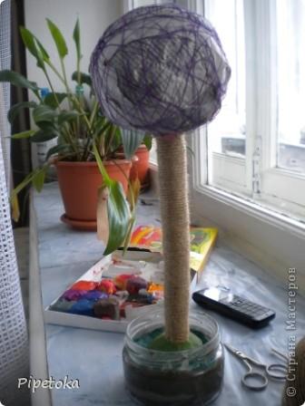 Моё деревце фото 3