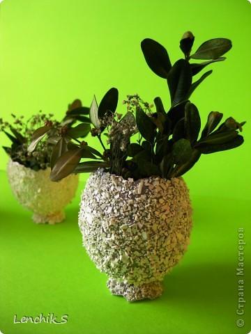 вазочки фото 5