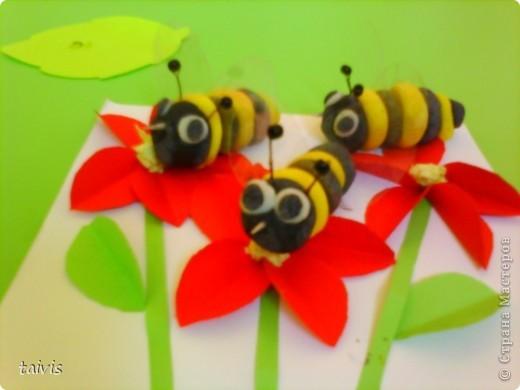Пчелки,пчелки... фото 1