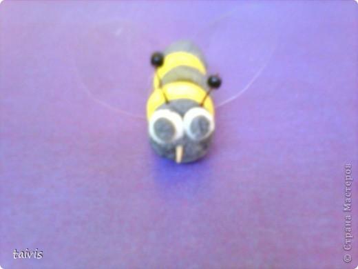 Пчелки,пчелки... фото 8