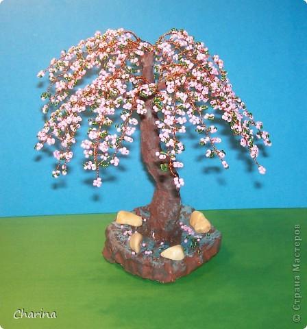 Здравствуйте, жители Страны Мастеров.Вот и моя сакура появилась на свет.Дерево получилось  высотой 20 см.