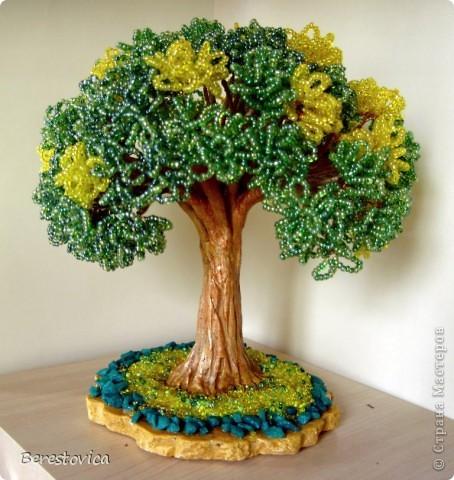 Серьезный бонсай и веселое фантазийное дерево)) фото 6