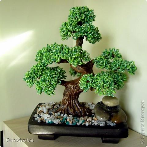 Серьезный бонсай и веселое фантазийное дерево)) фото 2