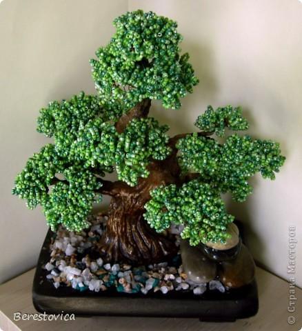Серьезный бонсай и веселое фантазийное дерево)) фото 3