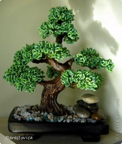 Серьезный бонсай и веселое фантазийное дерево)) фото 4