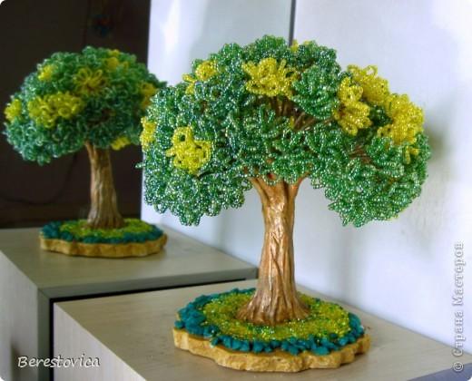 Серьезный бонсай и веселое фантазийное дерево)) фото 7