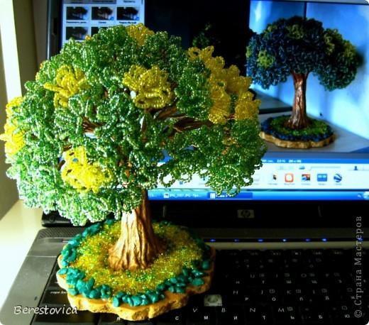 Серьезный бонсай и веселое фантазийное дерево)) фото 8