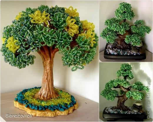 Серьезный бонсай и веселое фантазийное дерево)) фото 1