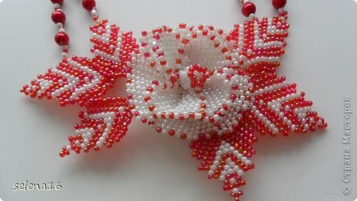 Красный цветок фото 7