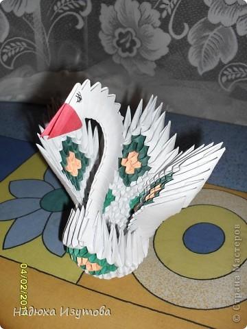 Жар-птица фото 5