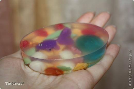Маленькая рыбка и дельфин)) фото 1