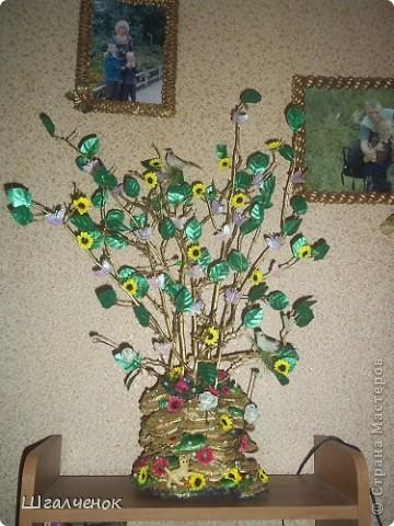 Волшебное деревце. фото 16