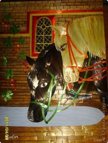 Кони у колодца (на водопое) фото 2