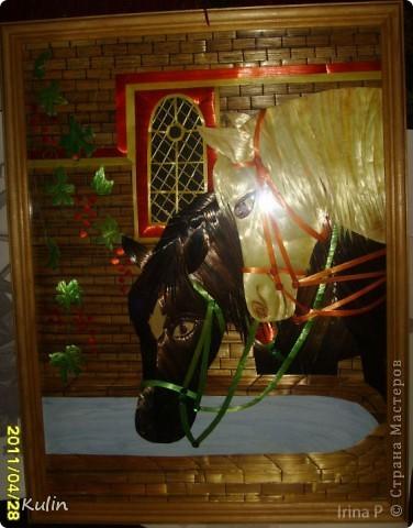Кони у колодца (на водопое) фото 1
