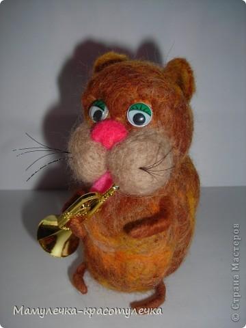 Кот-музыкант! фото 2