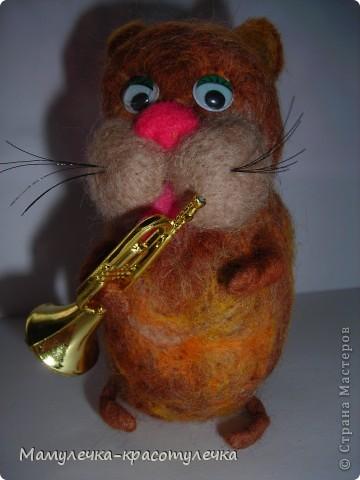 Кот-музыкант! фото 1