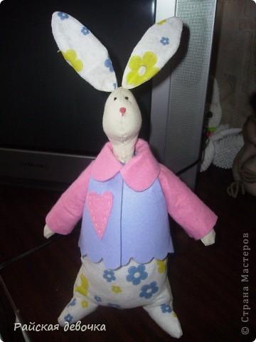 Кролик Толик фото 1