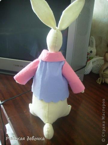 Кролик Толик фото 2
