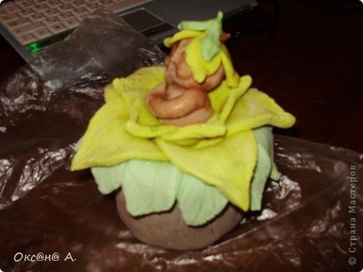 Повторюшка мукосолька-малыш в кувшине фото 3
